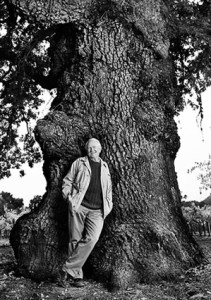volker eisele by an old oak tree